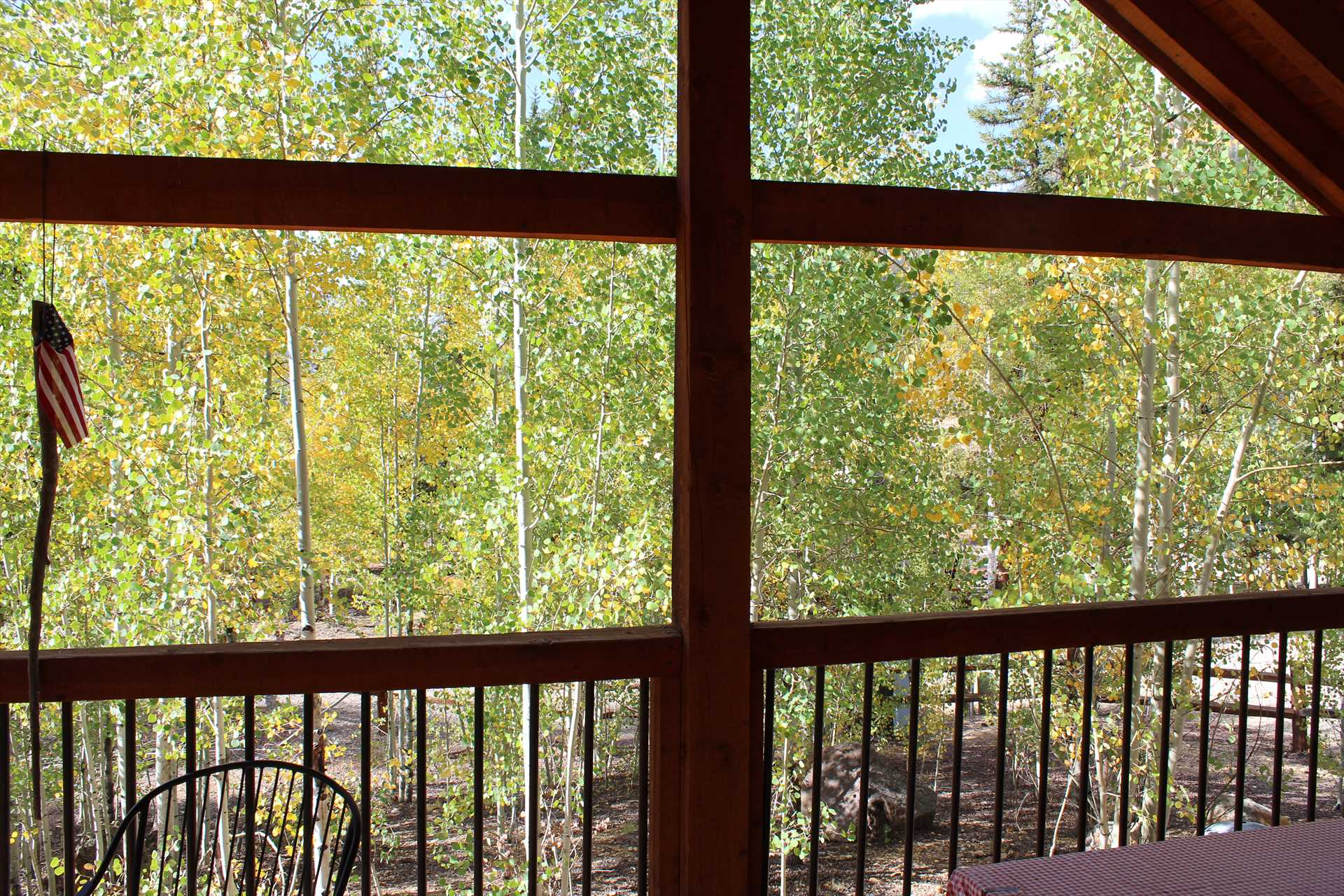 View Through Aspens from Front Deck