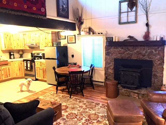 Living Room Looking into Kitchen (Bear, the cabins namesake)