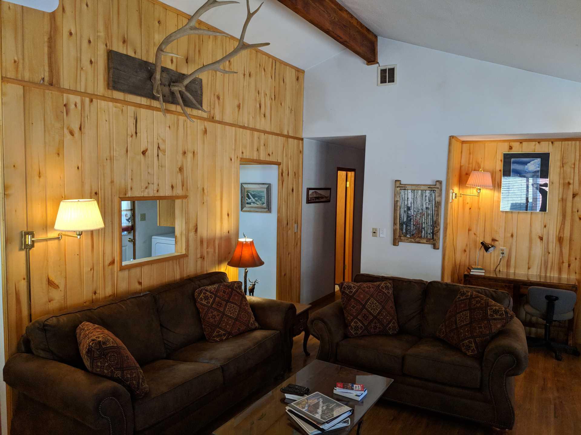 Sleeper Sofas in Living Room
